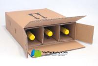 PTZ - Flaschenversandkarton 3er DHL UPS SET
